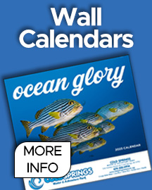Our wall Calendars are  in several styles